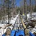 Gunstock to Install Mountain Coaster