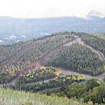Green Peak Trail Clearing Complete at Waterville Valley